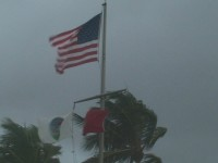 American Flag Hurricane Winds Stock Video footage