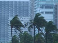 Hurricane Condo Palms Stock Video Footage