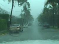 Tropical Storm Drive Stock Video Footage