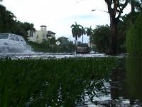 Flood: Flooded Neighborhood Stock Video Footage