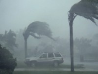 Storm Winds and Rain Stock Video Footage